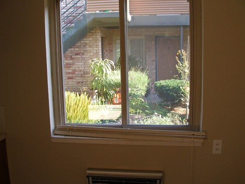 Window In Dining Room Pic