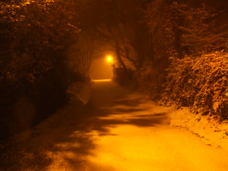 Walking in the Midnight Snow | by swansheart1