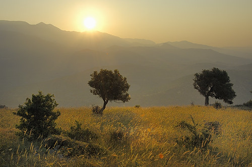 Landscape Crete June 2009 | by Willem van Leuveren sr.