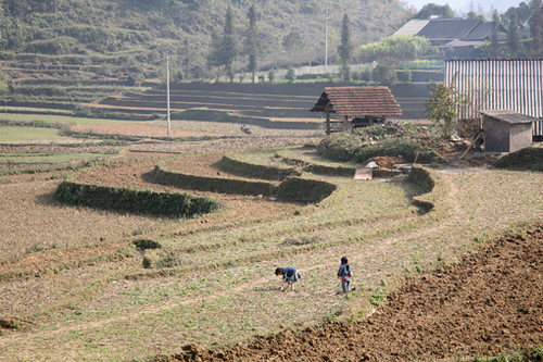 Bac Ha - Children work | by Maria Hsu