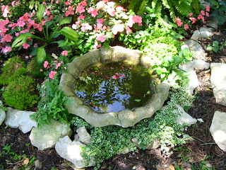 Little birdbath in shade garden | by pawightm (Patricia)