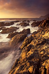 Montara Gold | by TomGrubbe