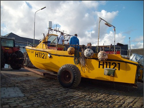 Crazy cat the withernsea fishing boat crazy cat being for Crazy fishing vr
