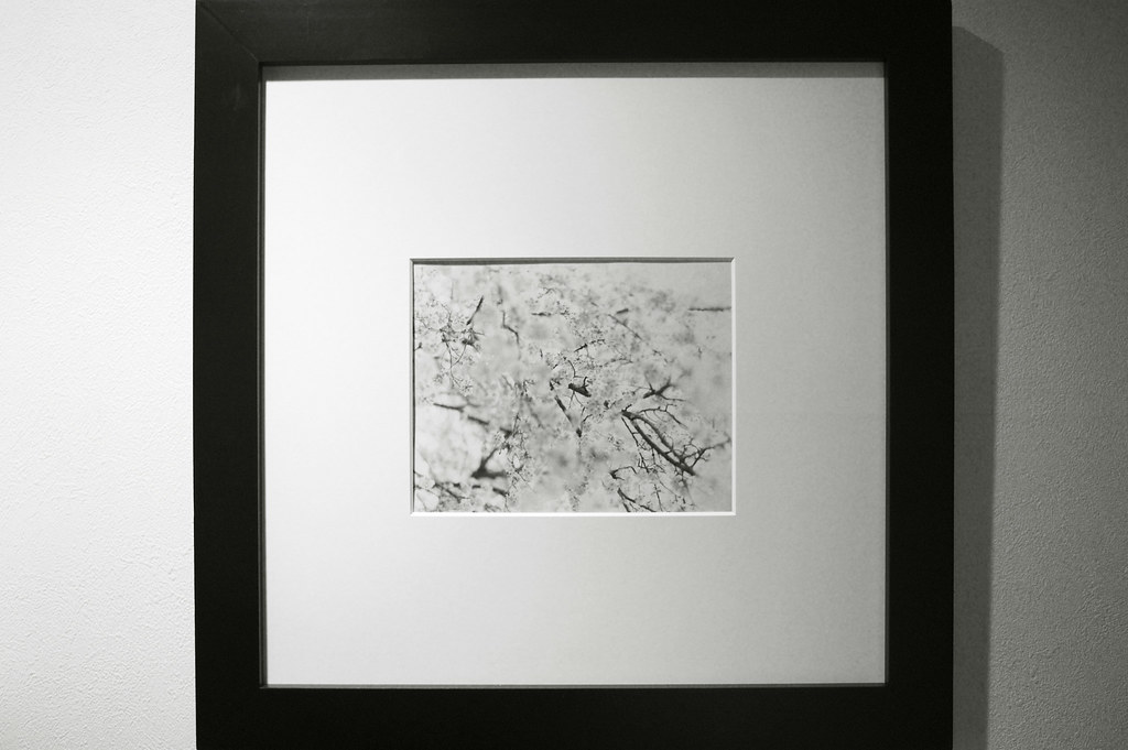 It is a test picture frame as for the 8X10 contact print. | Flickr