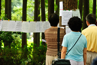 Visitors to the park viewing marriage ads hung from clothesline at the weekend marriage market | by thaths