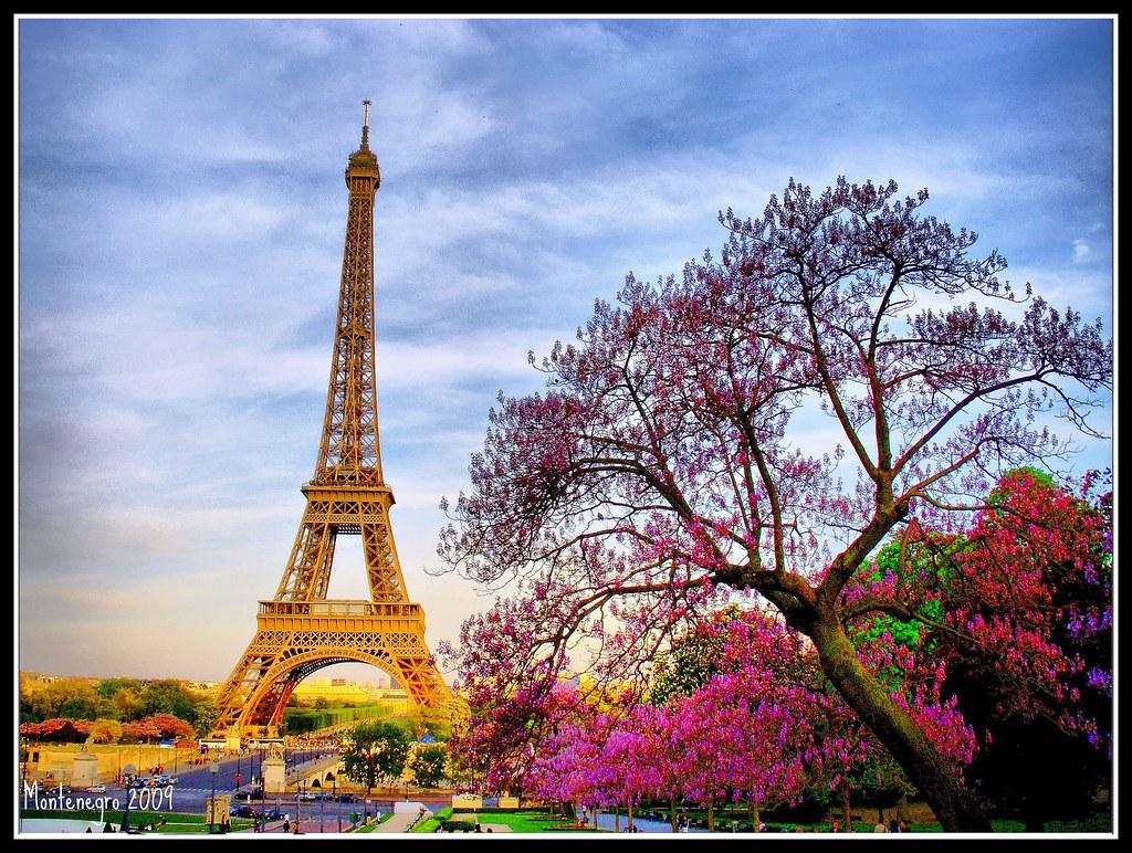paris eiffel tower france francia torre eiffel luis flickr