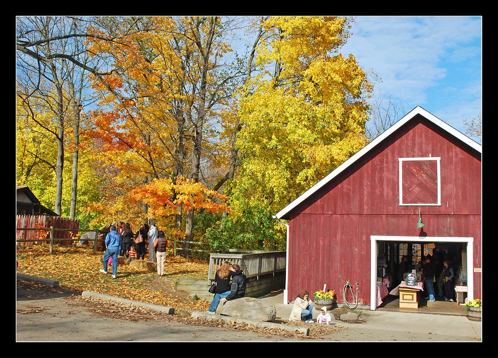 dexter michigan in fall image collections