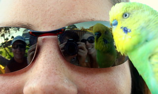 Reflect of a very intelligent bird - Violette - in sunglasses | by Matthieu Aubry.