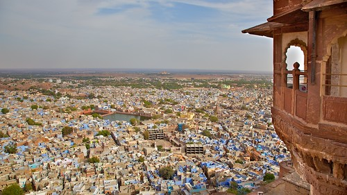 Rajasthan Blue 2 | by Michael Foley Photography