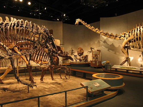 Jobs At The Denver Museum Of Natural History