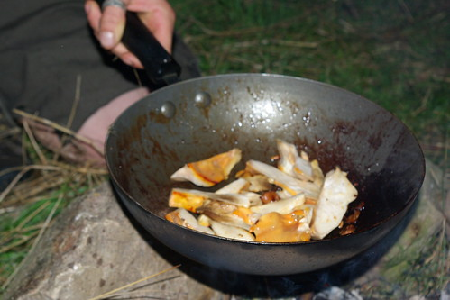 Cooking Chicken of The Woods | by The Hungry Cyclist