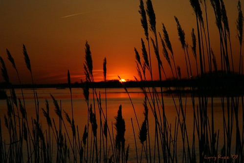 Spring of '09 Sunset II | by rrazz67(off more than on)