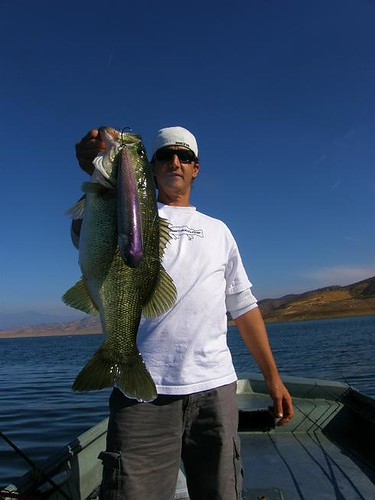 Diamond valley lake swimbaits for bass big topwater for Diamond lake fishing report