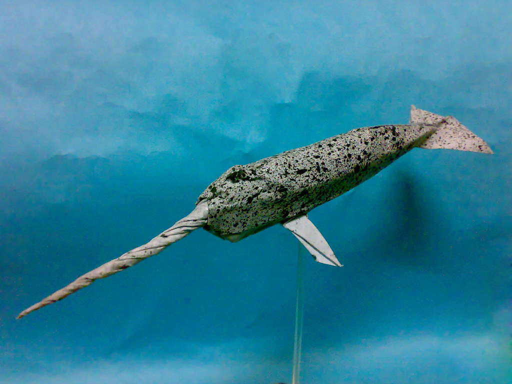 origami narwhal simple design created and folded by me un u2026 flickr
