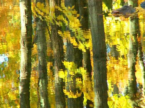 Yellow Autumn Reflection | by Stanley Zimny (Thank You for 23 Million views)