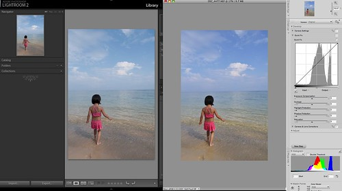 how to open nef photo in photoshop