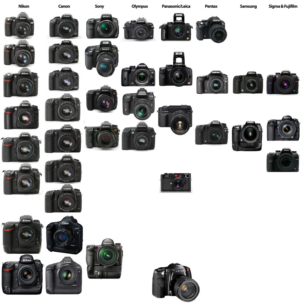 State of the DSLR market: Nikon vs. Canon vs. Sony/Minolta… | Flickr