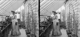Lydia Williams in the conservatory of her house in Royal Terrace, Kew, Dunedin, 1905 | by National Library NZ on The Commons
