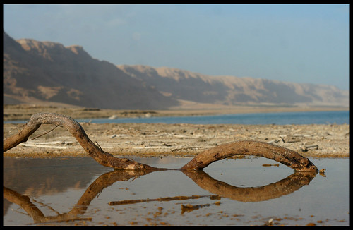 Dead sea reflection | by Avneyon