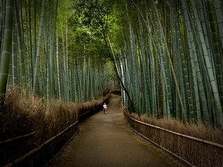the path of bamboo, revisited #5 (near Tenryuuji temple, Kyoto) | by Marser