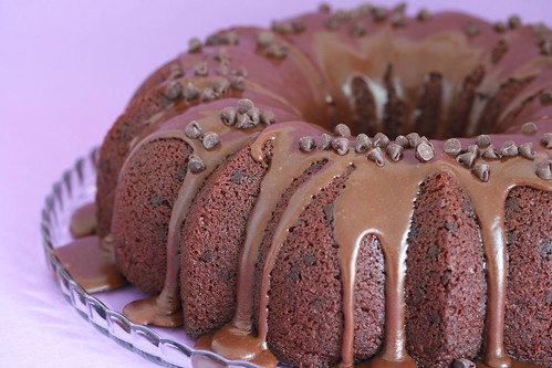 Chocolate-Cinnamon Bundt Cake with Mocha Icing - I Like Big Bundts | by Food Librarian