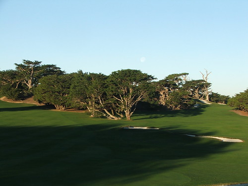 Cypress 14th fwy | by valuablebook