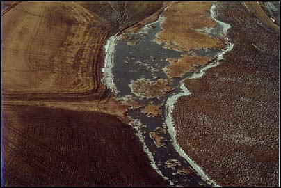 Aerial View of a Manure Spill at a Factory Farm | by Socially Responsible Agricultural Project