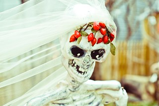 skeleton bride 303/365 | by Sophie_vf