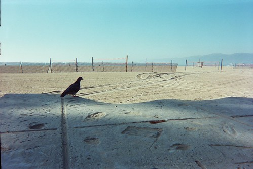Camera 29:020_24A | by Disposable Memory Project