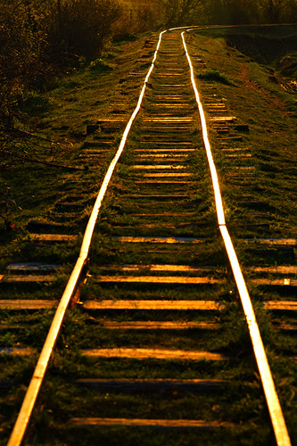Golden Rails and Beams | by Borneev