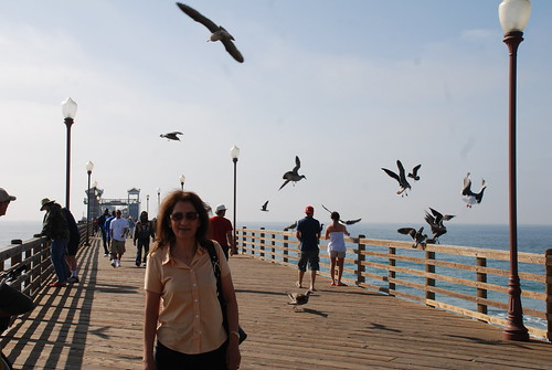 Fishing pier city of oceanside san diego county ca for Oceanside pier fishing reports