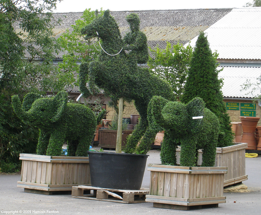 Fascinating Baby Elephant And Horse Jumping Topiary  Wyatts Garden Ce  Flickr With Exquisite  Great Baby Elephant And Horse Jumping Topiary  Wyatts Garden Centre  Hill Barn Farm Great With Extraordinary Gumtree Home And Garden Also Gnats In Garden In Addition Vertical Vegetable Garden Planters And Garden Ghome As Well As How To Use A Garden Incinerator Additionally Covent Garden Guest House From Flickrcom With   Exquisite Baby Elephant And Horse Jumping Topiary  Wyatts Garden Ce  Flickr With Extraordinary  Great Baby Elephant And Horse Jumping Topiary  Wyatts Garden Centre  Hill Barn Farm Great And Fascinating Gumtree Home And Garden Also Gnats In Garden In Addition Vertical Vegetable Garden Planters From Flickrcom