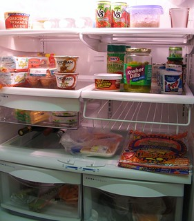 Our Refrigerator | by Mr.TinDC