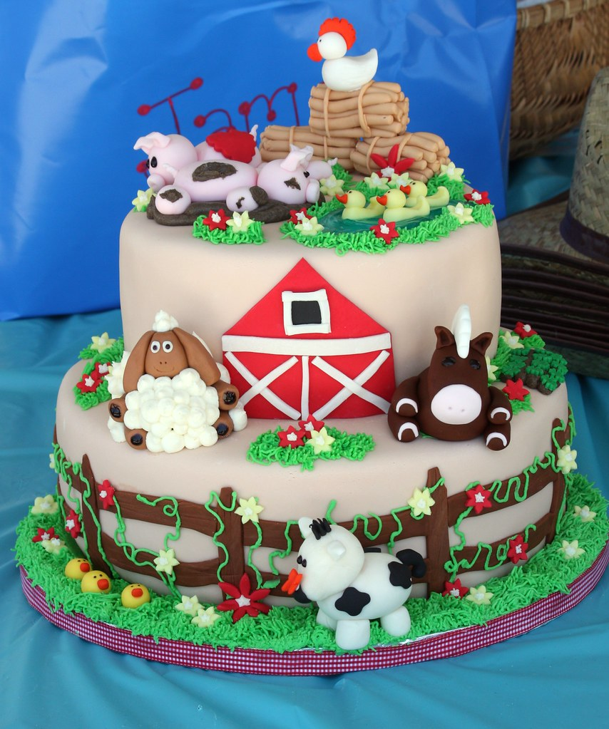Farm animal birthday cake 2 Another view Christine Flickr