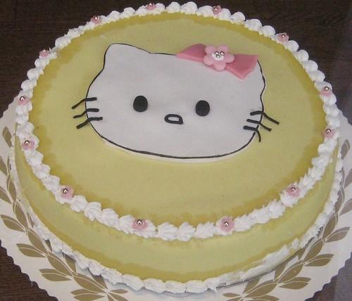 003 cat cake