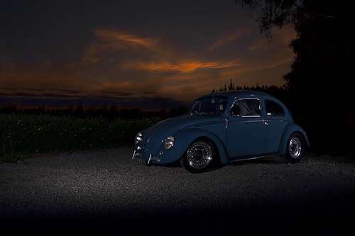 Bug in the sunset | by ekkoj
