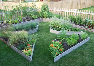 August garden jen berryman flickr for August garden designs