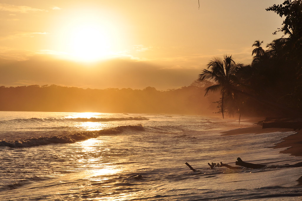 Golden Sunrise In Cahuita Costa Rica