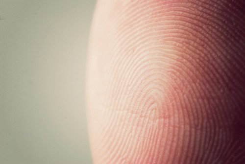 38-365 Fingerprint | by bcymet