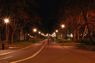 Lighted Path | by goingslowly