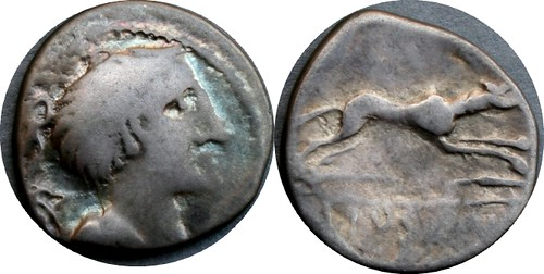 394/1 Imitative Denarius Denarius from Eraviscan Danube tribe, Artemis Dog spear, 3g51 AM#05116-35 | by Ahala
