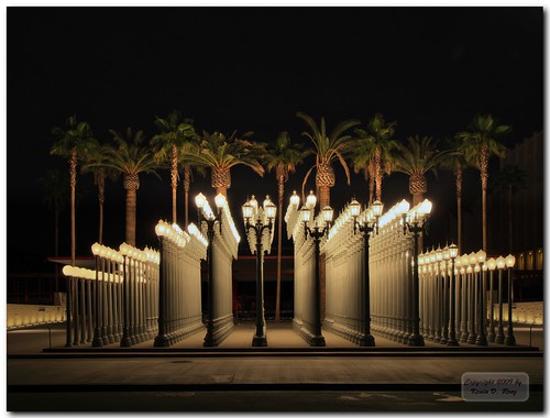 LACMA Lights | by GlixPix