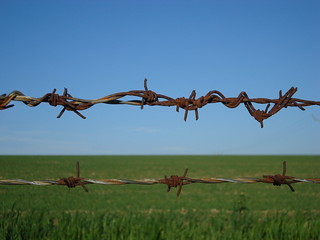 barbed wire | by S-A-J