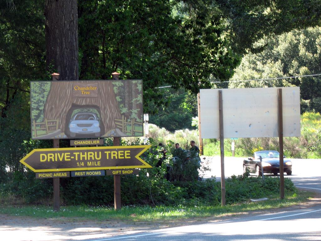 Chandelier drive thru tree 1 leggett california may 24 flickr chandelier drive thru tree 1 by jbcurio arubaitofo Images