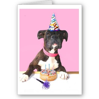 Happy birthday boxer dog greeting card happy birthday boxe flickr happy birthday boxer dog greeting card by ritmoboxers bookmarktalkfo Choice Image