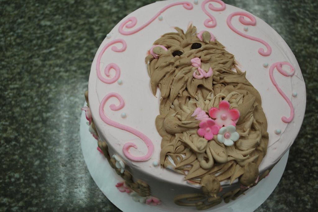 Hamster Birthday Cake Buttercream Hamster Birthday Cake Flickr