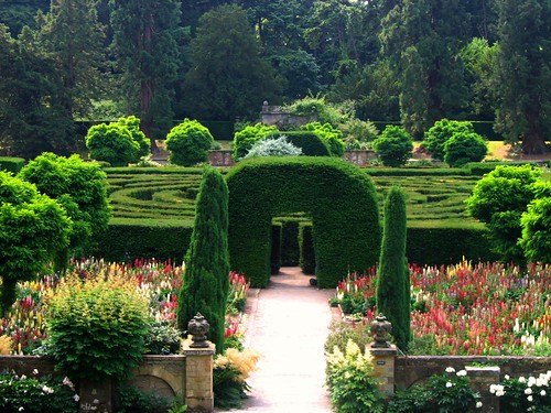 The Maze at Chatsworth | by UGArdener