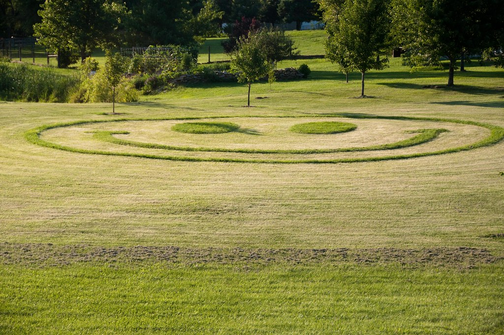 With Pasture as His Canvas, an Artist Turns a Purple Heart Green ...