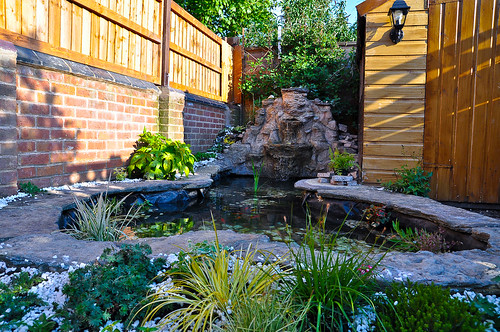 Garden pond building derby koi goldfish i can build for Koi pond builders east rand