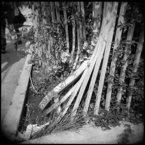 Broken Fence | by b.keelerfoster
